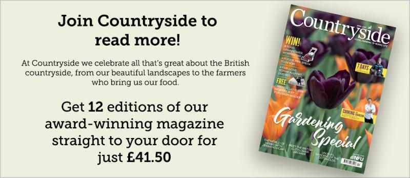 Countryside magazine advert_52456