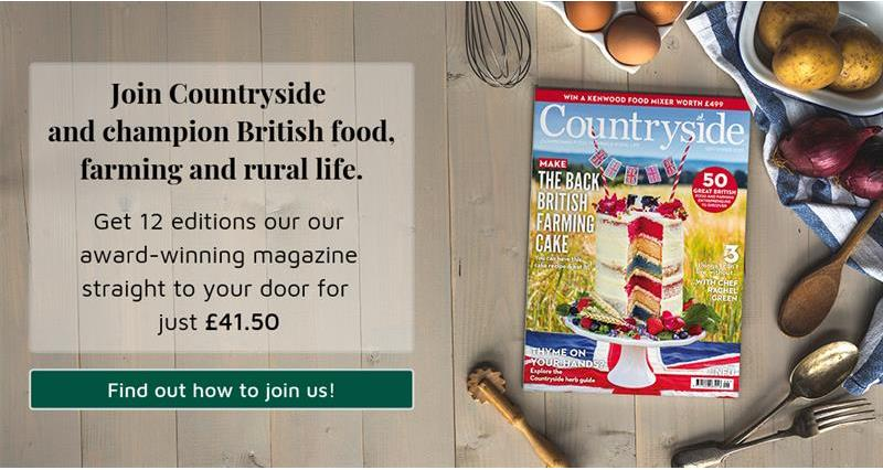 Countryside advert - champion British food, farming and rural life_68043