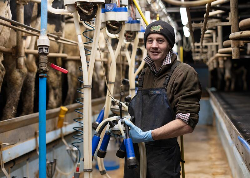 Pete Ledbury milking his dairy herd at North Cotswolds Dairy_71740