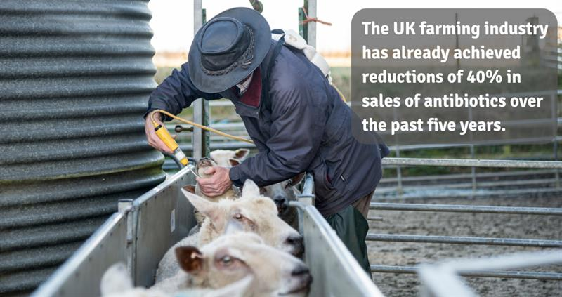 Use of antibiotics in farming_60186