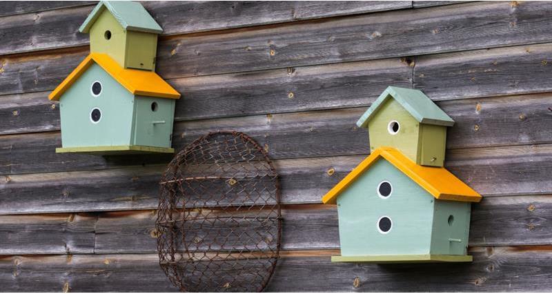 birds nest boxes_59011