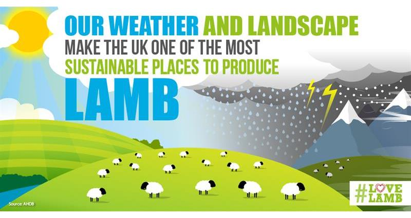 AHDB Love Lamb Week assets_74538