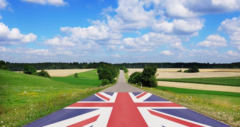 Route for British farming post-Brexit_69312