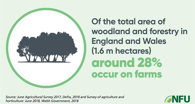 NFU Landscape and Access infographic_75197