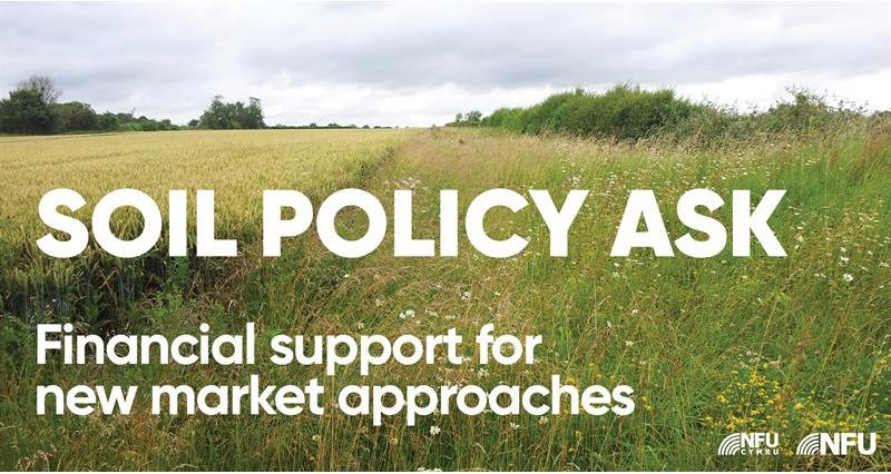 Soils ask:Financial support for new market approaches_71056