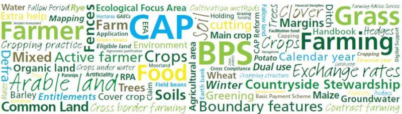 BPS graphic_32872