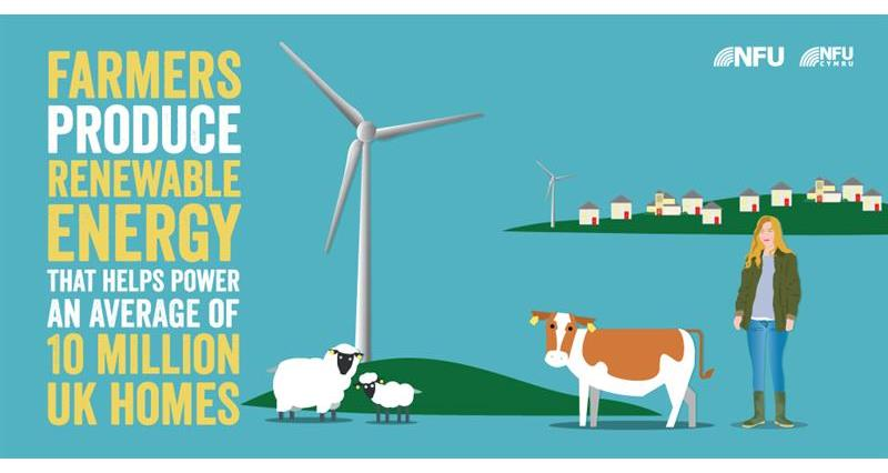 renewable energy infographics_61425