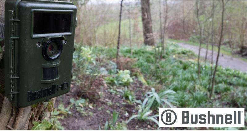 Bushnell trail cameras_64151