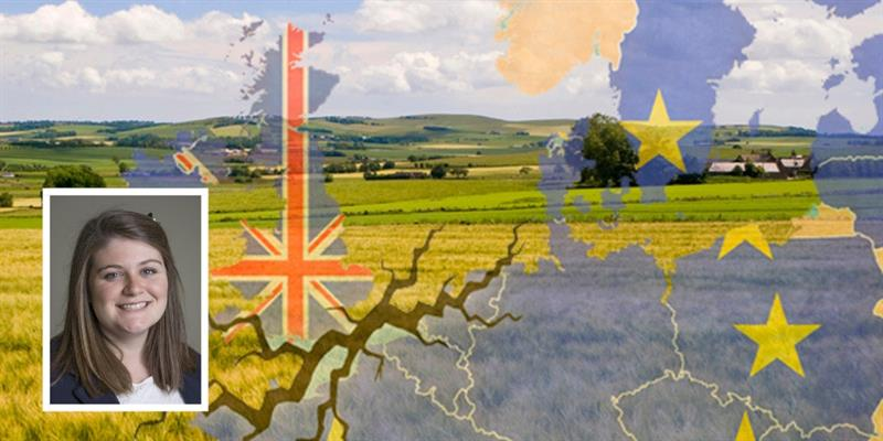 Tori UK EU Flag on fields composite_59405