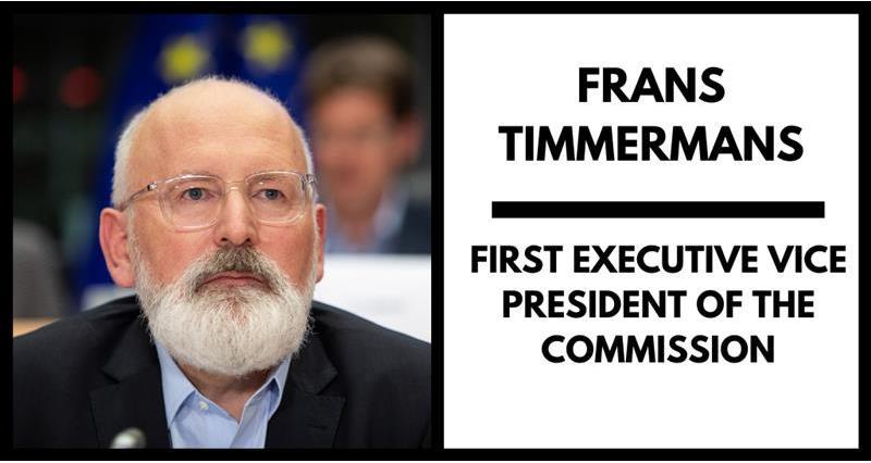 Timmermans _71346