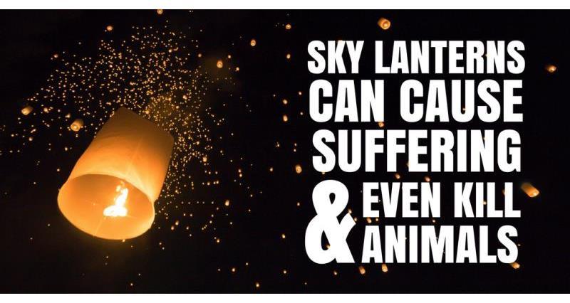 Sky Lanterns_54668