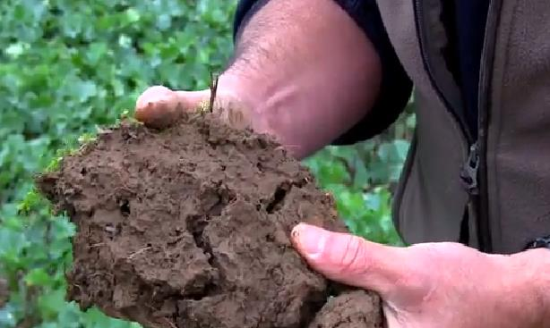 soil clod showing structure_30849