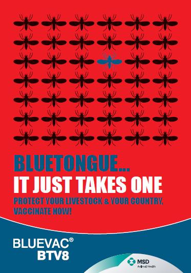 MSD Bluevac BTV 8 leaflet cover