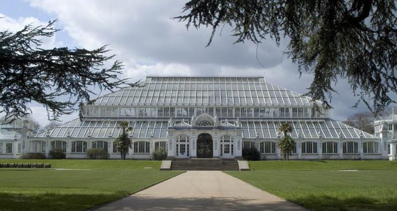 Temperate House, Royal Botanic Gardens_14555