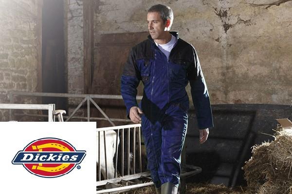 Dickies Workwear