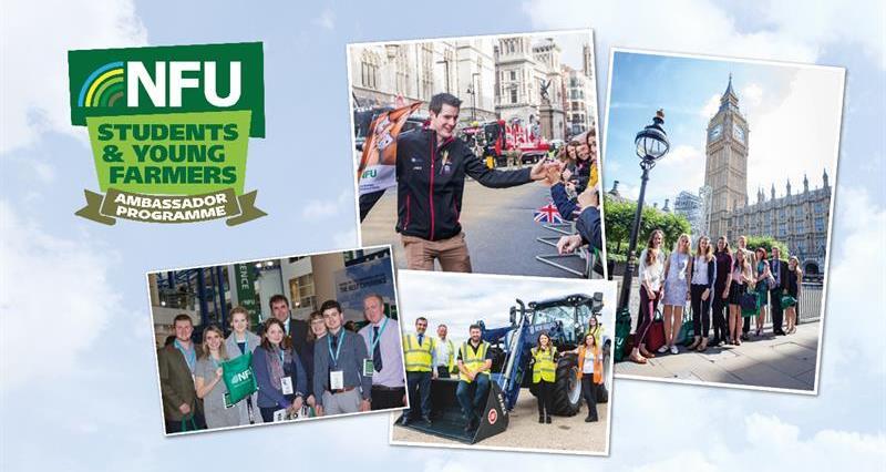Student & Young Farmer Ambassador programme_64614