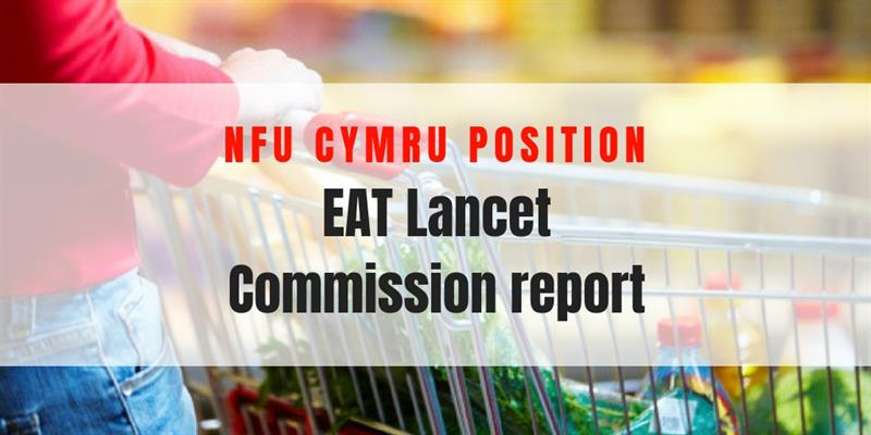 EAT Lancet Report_60307
