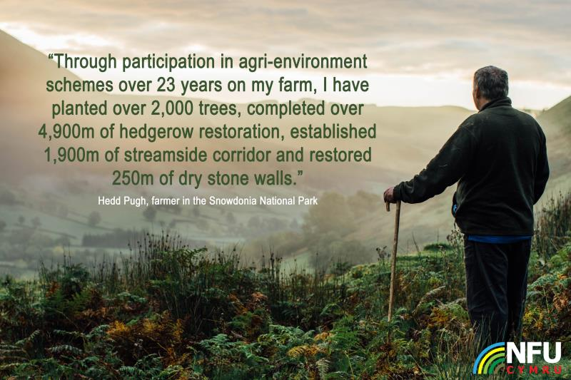 State of Nature report - Hedd - graphic_37309