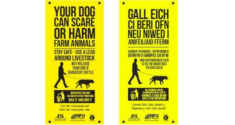 Owners urged to control their dogs as cost of livestock attacks more than doubles