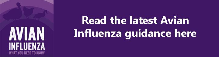 Avian Influenza scroller, NFU Cymru_38965