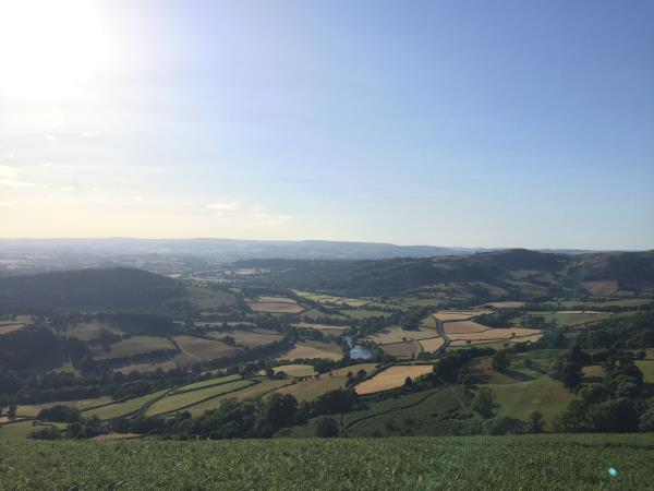 Welsh landscape_57752