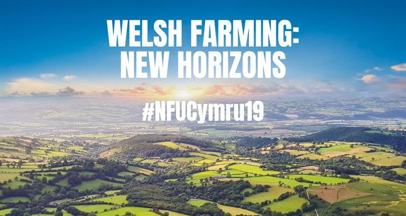 'Welsh farming can tackle future challenges,' says NFU Cymru President