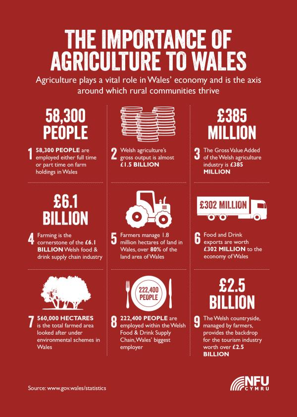 What is the importance of Agriculture for our country?