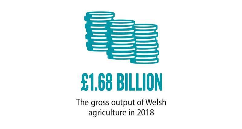 NFU Cymru ,General Election, economy_70675