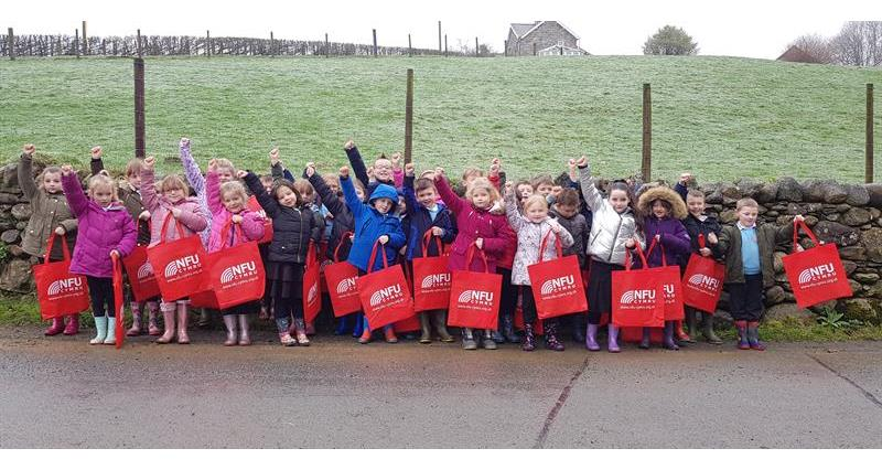 New life delivered as school visits farm