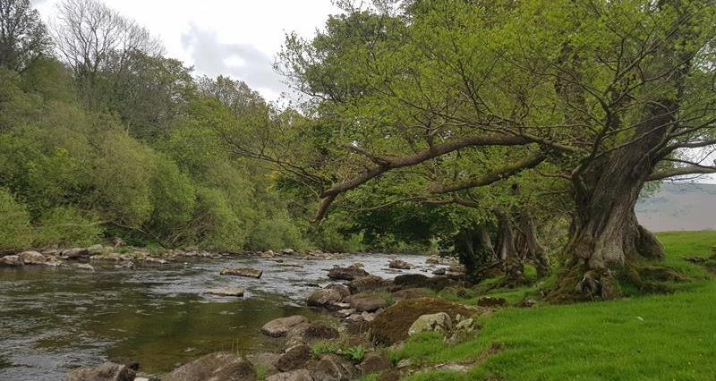 river, stream, landscape, Wales_69446