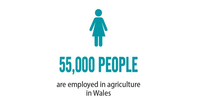 NFU Cymru ,General Election, employment_70673