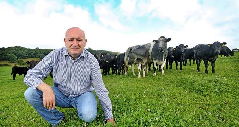 NFU Cymru President, John Davies with cattle_69522