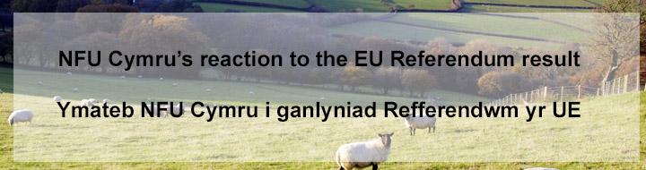EU referendum, NFU Cymru_35508