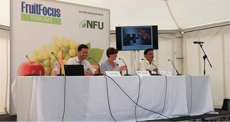 NFU Panel at Fruit Focus 2018_56032