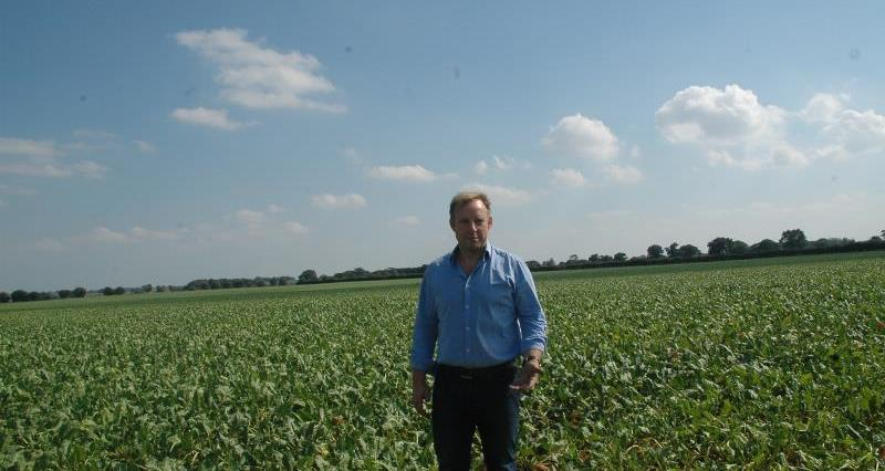 Find out how sugar beet is grown with grower Kit Papworth