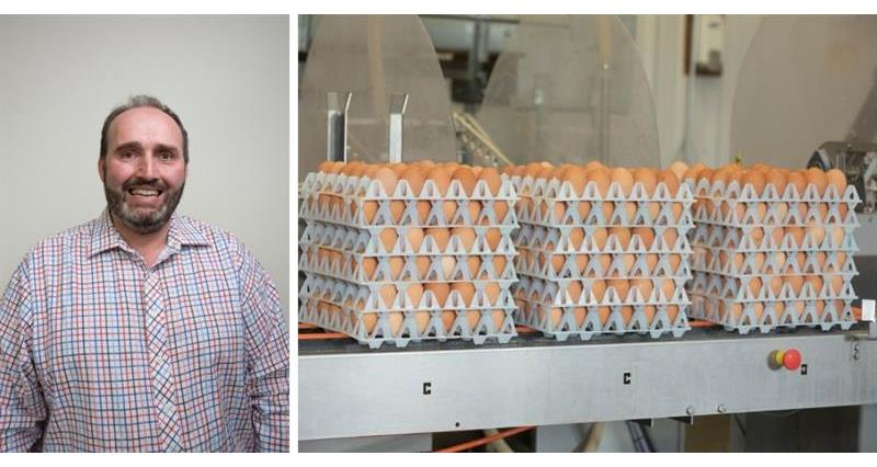 Tariffs are a 'must-have' for UK egg industry