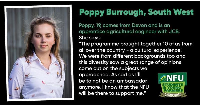 Poppy Burrough_73241