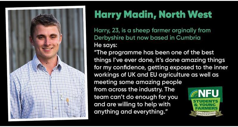 Harry Madin_73239