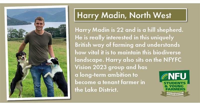 Harry Madin_67631