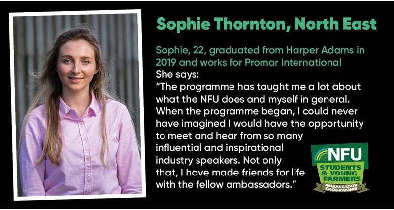 Sophie Thornton_73243