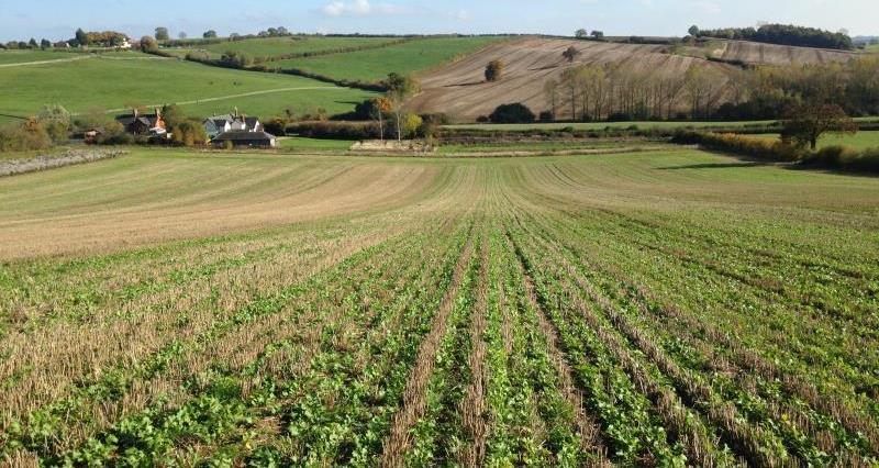 Less is More: Managing Water Quality on Farm - Leicestershire event: 4th Dec 2019