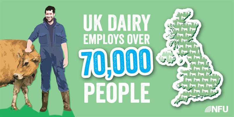 Dairy Infographic 70,000_65297