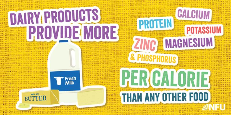 Dairy Infographic per calorie _65304