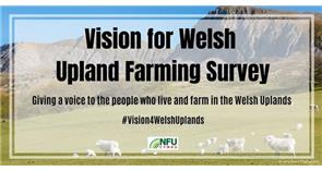 New NFU Cymru survey seeks to give a voice to the Welsh uplands