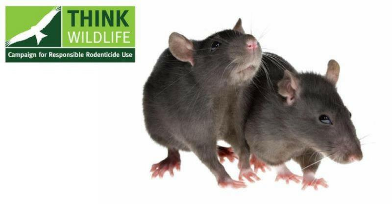 rodenticide use_50120