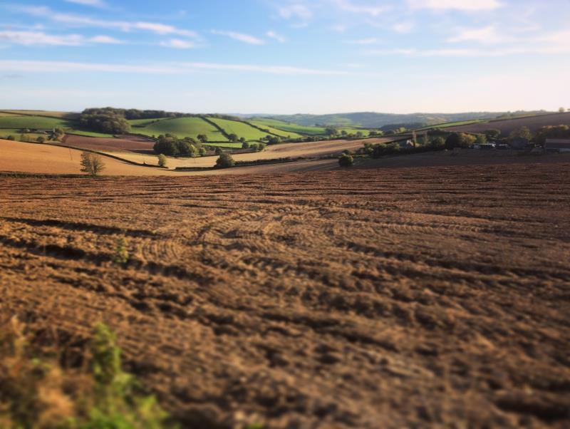 Devon Autumn landscape_48145