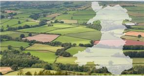 Proposals to continue and simplify agricultural support for farmers and the rural economy