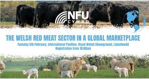 NFU Cymru Red Meat Summit: Brexit No Deal threat leaves Welsh livestock sector in perilous position