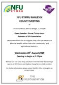 anglesey county meeting - 28th august
