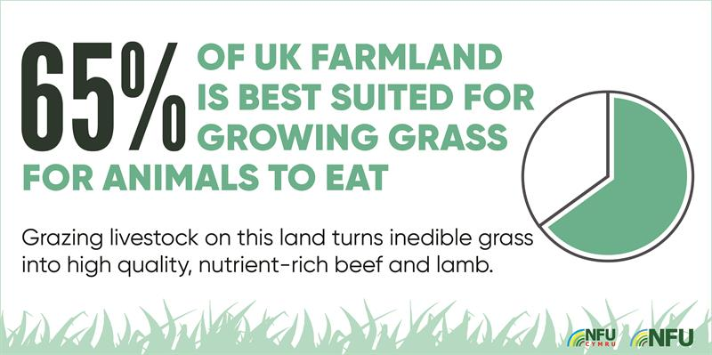 65% UK farmland best suited to grazing infographic _70605